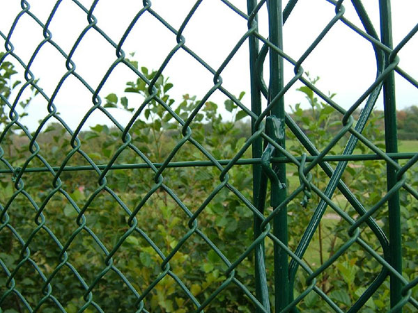 Wire Mesh Fence - Anping Shotran Wire Mesh Products Co., Ltd